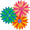 Coloured Daisies Clip Art