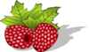 Raspberries Clip Art