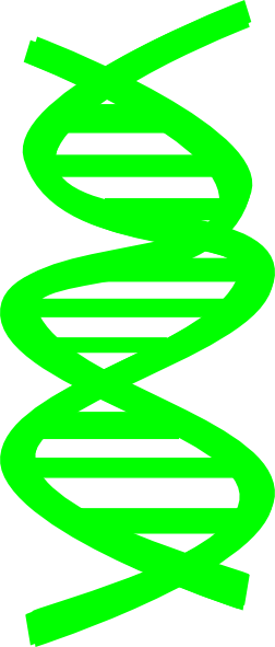 Gallery For > DNA Science Clipart