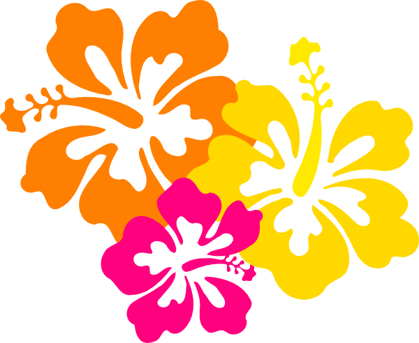Hibiscus Flowers 4 Grouped Clip Art At Clker