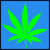 Green Hemp Leaf Blue Back Ground Clip Art