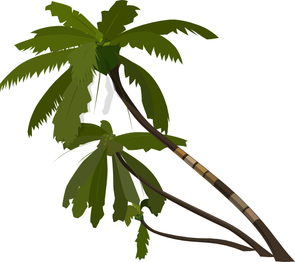 palm tree clip art - photo #50