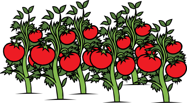 Clearer Tomato Patch Clip Art at Clker.com - vector clip ...