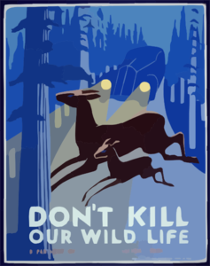 Don T Kill Our Wild Life Clip Art