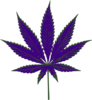 Purple Weed Icon Clip Art