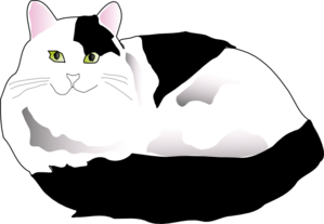 Black And White Cat Clip Art