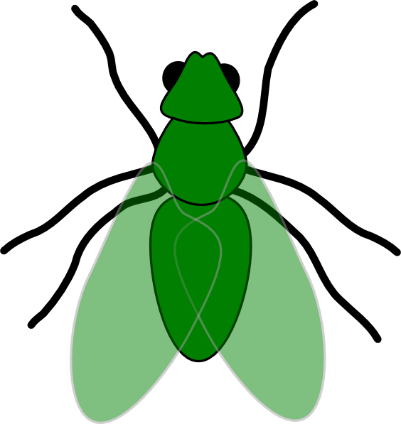 animated fly clipart - photo #6