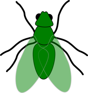 Green Fly Green For Web Clip Art