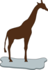 Giraffe On Ice Brown Clip Art