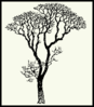 Bare Tree On Yellow Clip Art