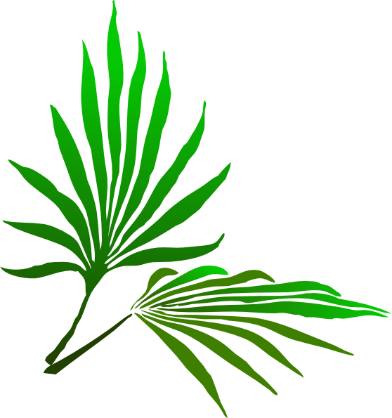 palm sunday branch clip art at clker com vector clip art online rh clker com palm sunday clip art free images Palm Sunday Picture Illustrations