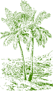 Olive Palm Tree Clip Art