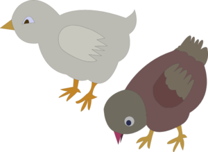 Chickens 002 Figure Color Clip Art