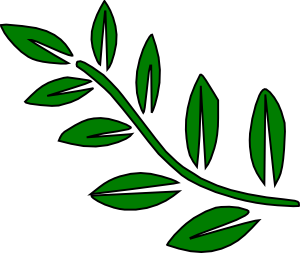 Green Tree Branch Clip Art