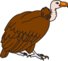 Big Brown Vulture Clip Art