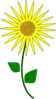 Sunflower Cartoon Clip Art