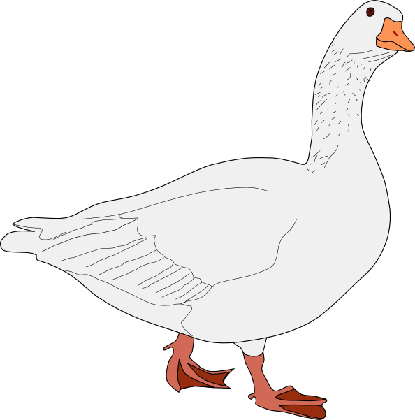goose hunting clipart - photo #10