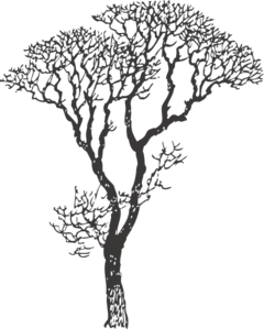 Charcoal Gray Tree Clip Art