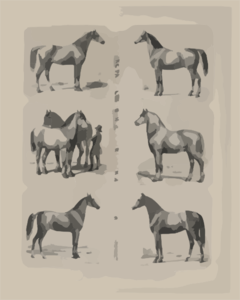 The Principal Breeds Of Horses In Use In North America Dedicated To The Friends And Admirers Of The Horse / Drawn From Life, Lith D & Pub D By A. Kollner. Clip Art