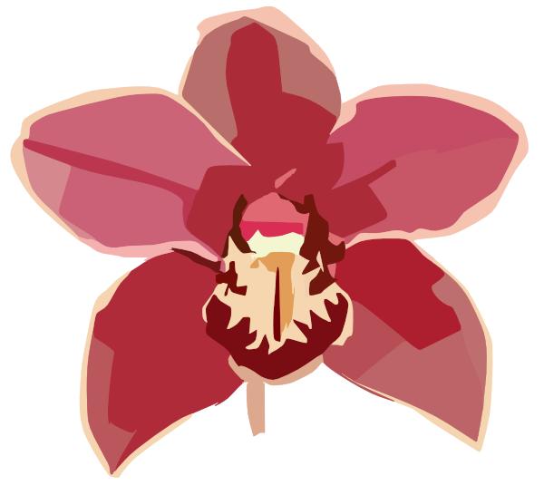 Orchid Copy Clip Art at Clker.com - vector clip art online ...