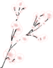 Simple Cherry Blossom Branch Clip Art