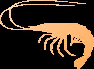 shrimp clip art at clker com vector clip art online royalty free rh clker com Shrimp Logos Clip Art Funny Shrimp Clip Art