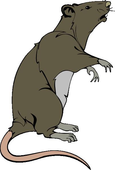 mouse clip art at clker com