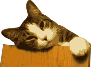 Relaxed Cat On Table Clip Art