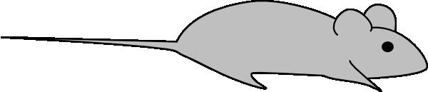 Light Grey Lab Mouse Clip Art at Clker.com - vector clip art online ...