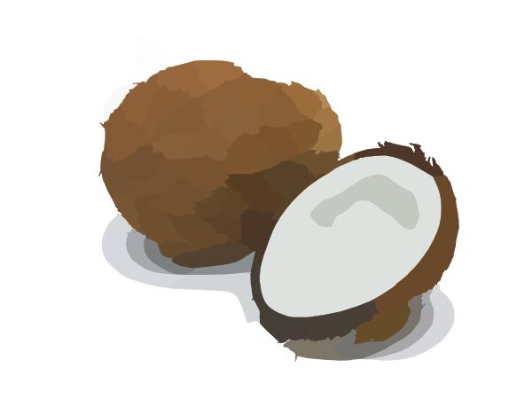 coconut clip art at clker com vector clip art online coconut clip art free coconut clip art vector