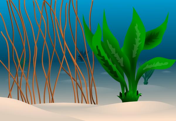 ocean floor clipart - photo #1