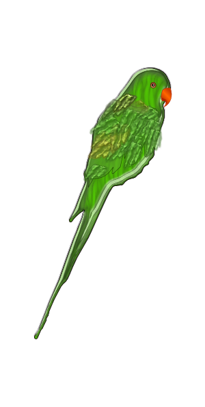 clipart parrot pictures - photo #48