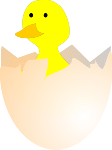 Hatching Chick Clip Art