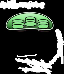 chloroplast clip art at clker com vector clip art online trumpet clip art black trumpet clip art full page