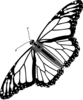 Monarch Butterfly Bw No Shadow Clip Art