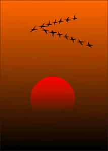 Sunset With Geese Flying Clip Art