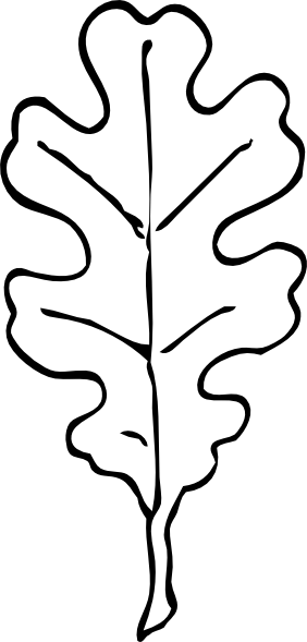 oak leaf outline clip art at clker com vector clip art online rh clker com oak leaf clipart free oak leaf clipart free