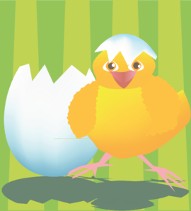 Hatched Chicken Clip Art