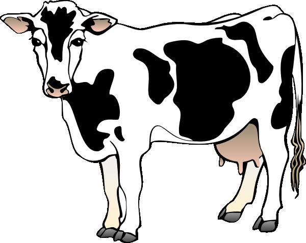 free clip art cow border - photo #34