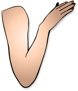 Arm And Hand Clip Art
