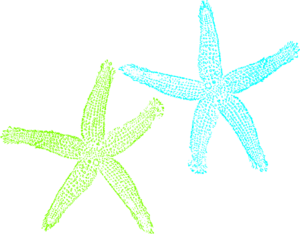Turquoise And Lime Green Starfish Clip Art