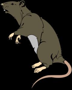 grey greedy rat clip art at clker com vector clip art online rh clker com clipart art clip art artists