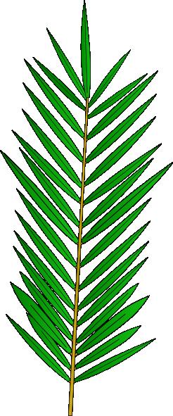 Palm Clip Art at Clker.com - vector clip art online, royalty free ...