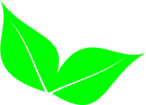 Two Leaves Clip Art