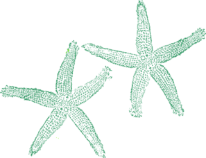 Green Starfish Clip Art