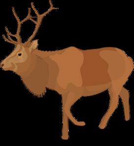 Reindeer 5 Clip Art