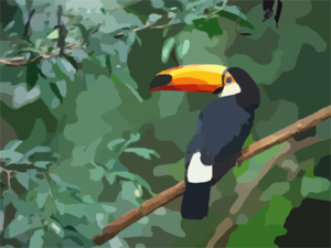 Toco Toucan Copy Clip Art
