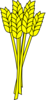 Wheat Clip Art