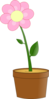 Pink Flower In Pot Clip Art
