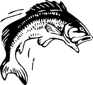 Fish Out Of Water Clip Art
